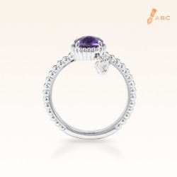Silver Beawelry Elegance Ring with Amethyst